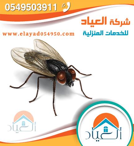 شركة رش مبيدات بالمدينة المنورة 0549503911